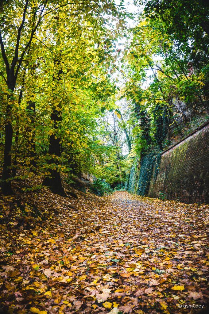 Прогулка по осенней Праге